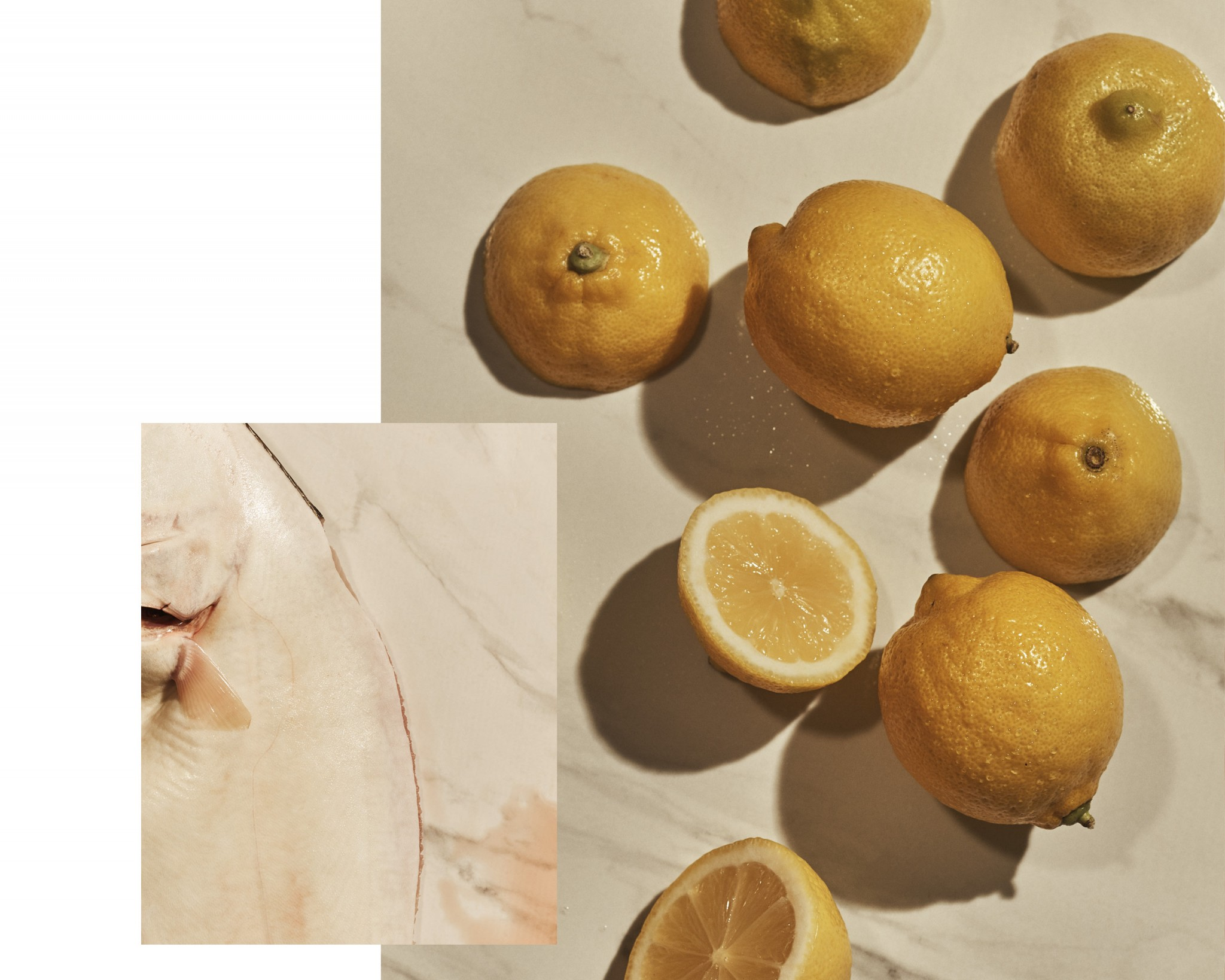 Two closeup images of a sea halibut and lemons