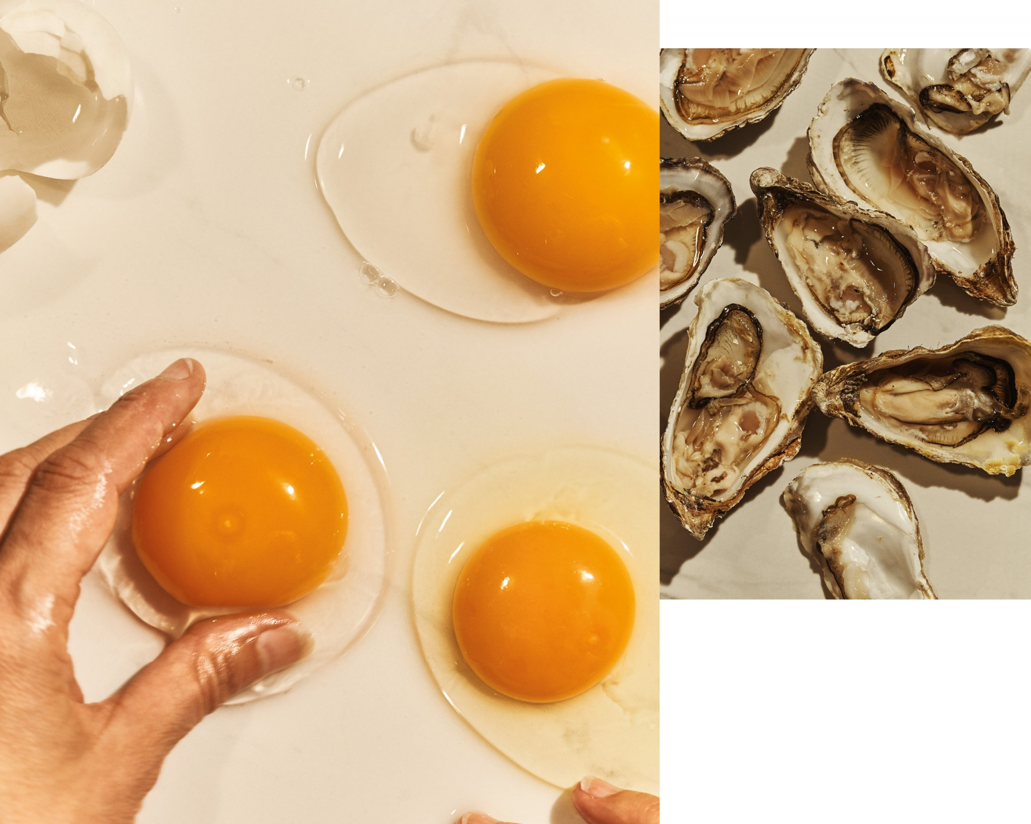 Two closeup image of eggs and oysters